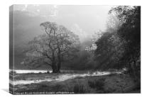 Sunrise and mist, Langdale Valley, Lake District