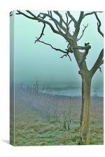 Dead trees, Canvas Print