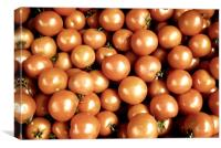 Tomato, Canvas Print