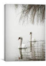 SWANS IN THE MIST #2, Canvas Print