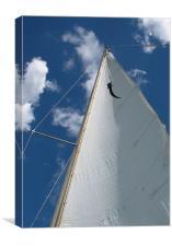 Sail, Canvas Print