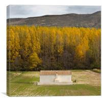 Autumn in Alhama, Canvas Print