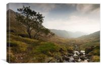 Easedale to Helm Cragg, Canvas Print