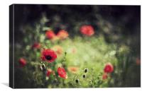 Meadows in Red, Canvas Print