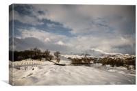 Winters Reach, Canvas Print