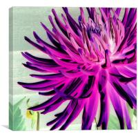 Fluorescent flowers I, Canvas Print
