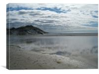 New Zealand Beach, Canvas Print