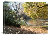 Central Park, Canvas Print
