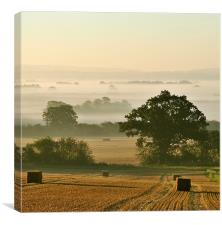 Chiltern Mist, Canvas Print