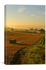 Harvest Time Mist, Canvas Print
