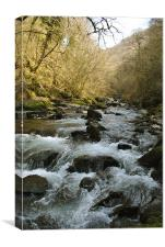 The East Lyn River near Lynmouth, Canvas Print