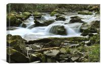 a rocky stream on exmoor, Canvas Print