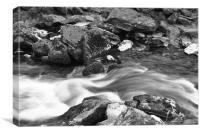 an exmoor stream b+w, Canvas Print
