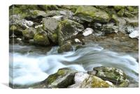 an exmoor stream, Canvas Print