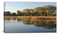 Marsworth Reservoir, Canvas Print