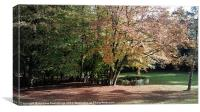 A leafy afternoon, Canvas Print