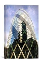 The Gerkin, Canvas Print