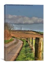 Country Lane, Canvas Print