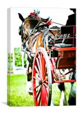 Horse & Carriage, Canvas Print
