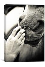 That Gentle touch, Canvas Print
