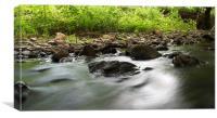 River Flow, Canvas Print