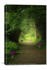 Magical Stroll, Canvas Print