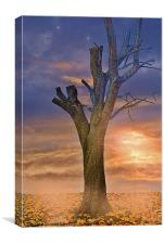 Autumn Sunset Glow, Canvas Print