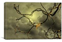 Time Slipping Away, Canvas Print