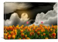 Tip Toe Through the Tulips, Canvas Print