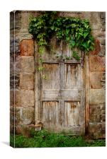 Old Door, Canvas Print
