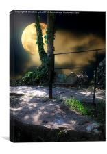 Walking in Moonlight, Canvas Print