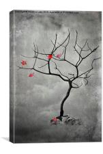 Natures Song, Canvas Print