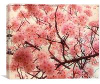 Welcome to Spring, Canvas Print