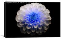 Crystal Blue, Canvas Print