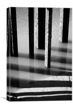 Black and White Reflections, Canvas Print
