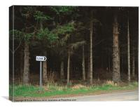 Lost sign post, Canvas Print