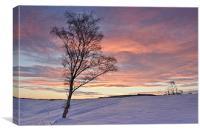 Winter Sunset - Waldridge Fell, Country Park., Canvas Print