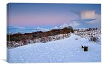 Winter Storm Clouds - Waldridge Fell Country Park, Canvas Print