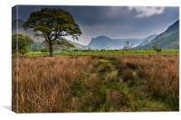 Fleetwith Pike, Buttermere, Canvas Print