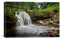 Ashgill Waterfalls, Canvas Print