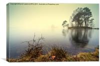 Tarn Hows, Cumbria, Canvas Print