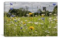 English Country Wildflower Meadow, Canvas Print