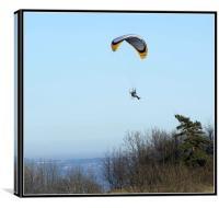 Micro gliding, Canvas Print