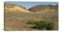Desert, Canvas Print