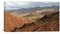 Wild Desert Landscape in April, Canvas Print