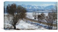 Winter Landscape, Canvas Print