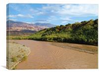 Brown River, Canvas Print