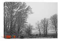 Falling Snow.Pembrokeshire., Canvas Print