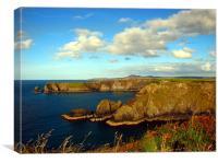 Pembrokeshire Coastal Path, Canvas Print