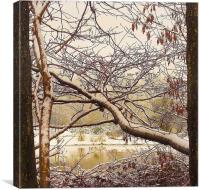 Golden Pond.Wales., Canvas Print
